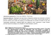 Vendemmia e Bici a Camperchi con FIAB Arezzo ANNULLATA