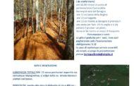 Domenica 3 Novembre in mountainbike nel foliage di Catenaia con FIAB